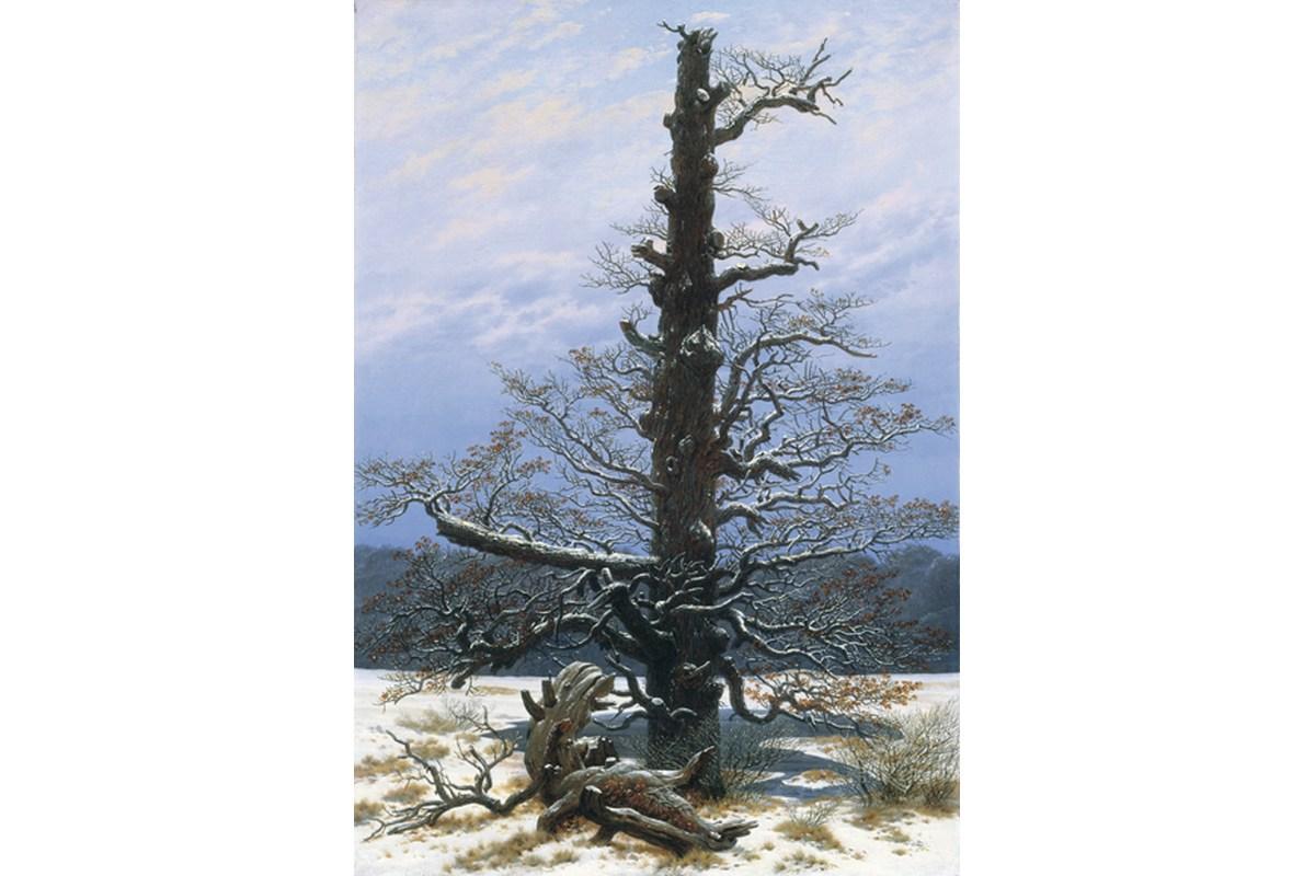 Kunstdruck Friedrich, Eichbaum im Schnee
