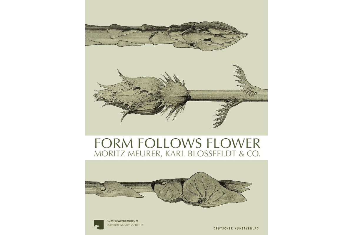 Form Follows Flower