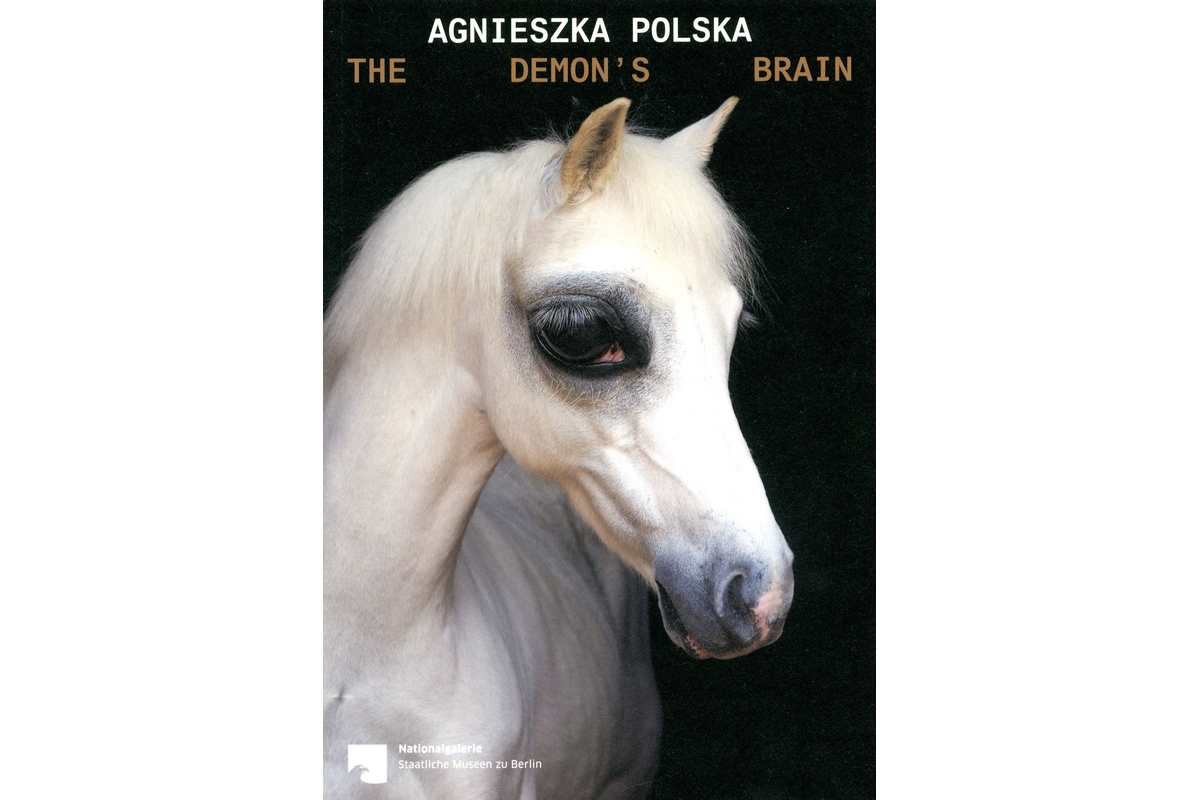 Agnieszka Polska: The Demon's Brain