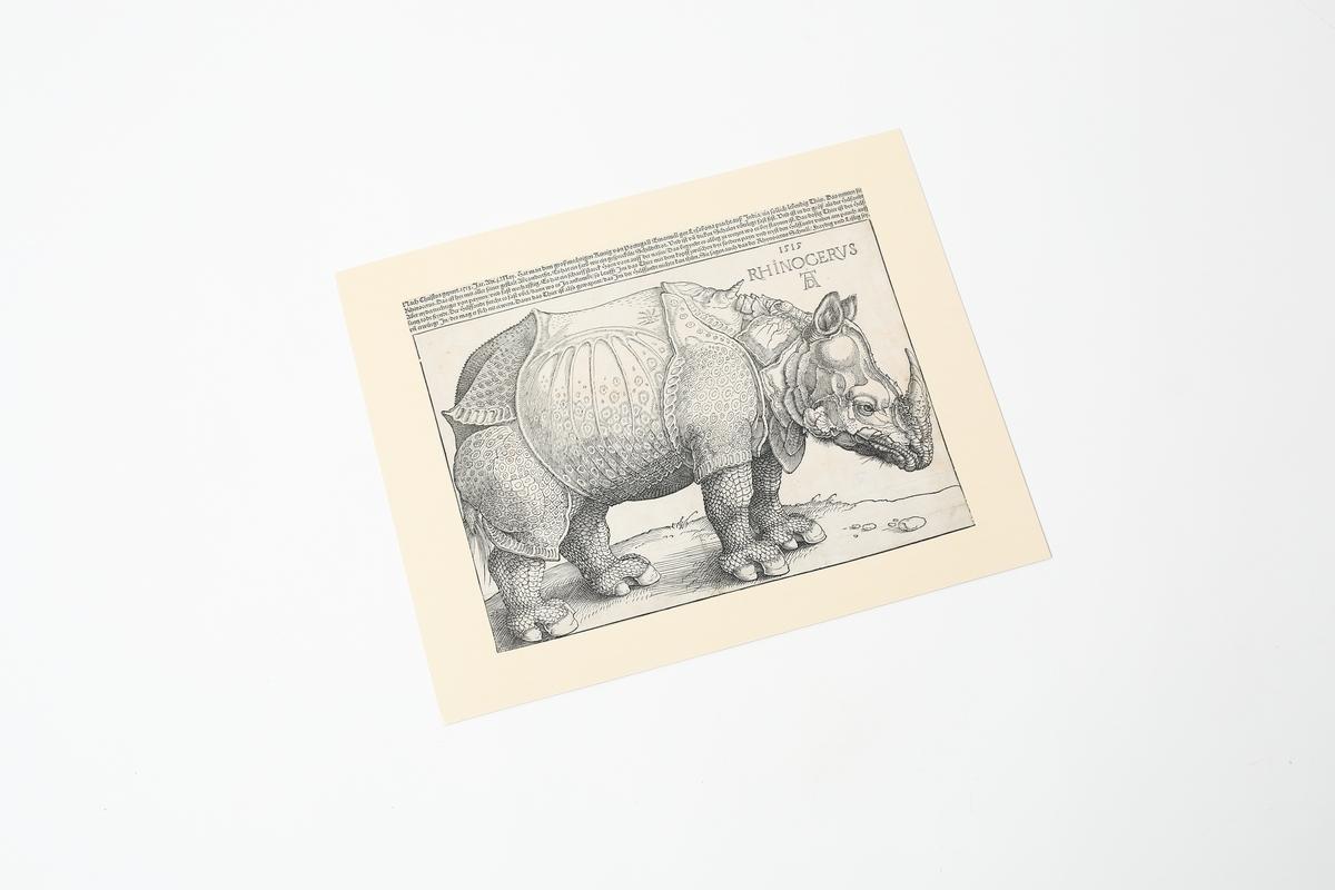 Miniprint Dürer: Rhinozeros