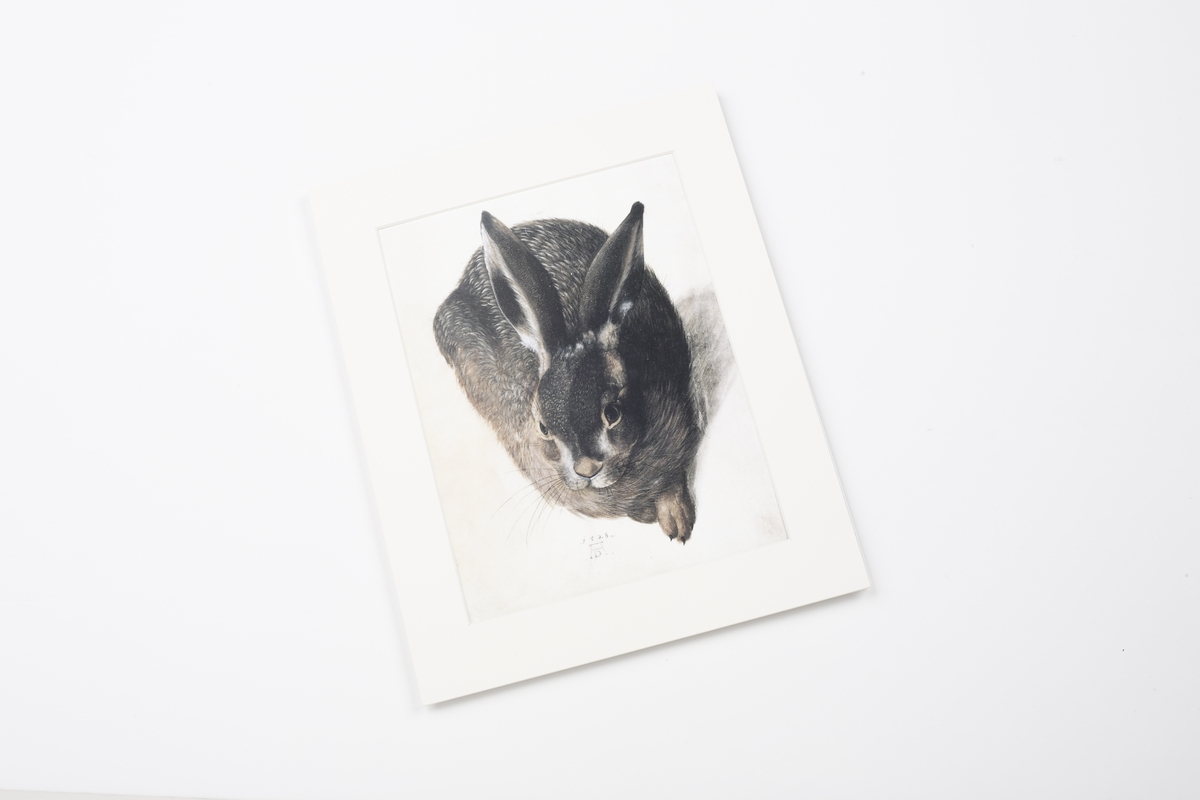 Miniprint in Passepartout: Hoffmann, Liegender Hase