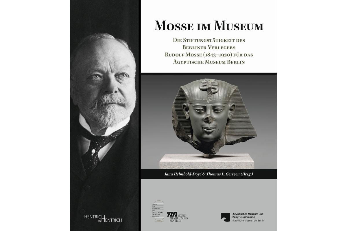 Mosse im Museum