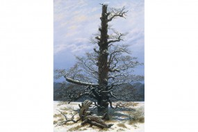 Art print Friedrich, The Oak Tree in the Snow
