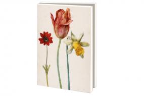 Kartenset Flegel: Frühlingsblumen
