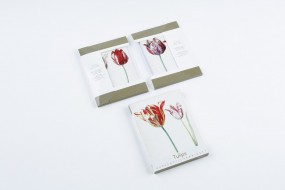 Postcard set Tulips